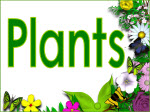 Image result for plants heading