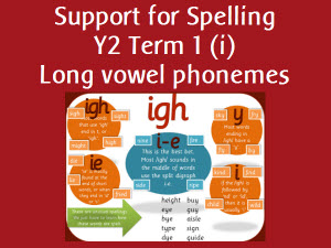 Support for Spelling Term 1