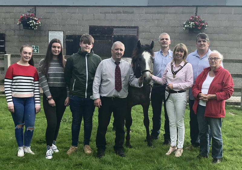 RBSTNI Annual Show and Sale is on 17th August 2019