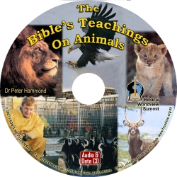 The Bible's Teachings on Animals