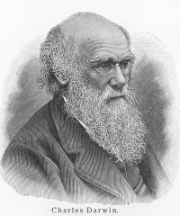 Charles Darwin in the Galapagos