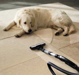 carpet cleaning Buford, carpet cleaners Buford