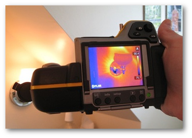 Home infrared imaging services