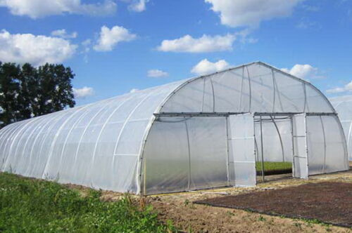 Greenhouse Plastic Clear 4 Year 6 Mil Poly Film Cover - Multiple Sizes $35.99