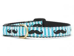 Cat Collars & Harnesses