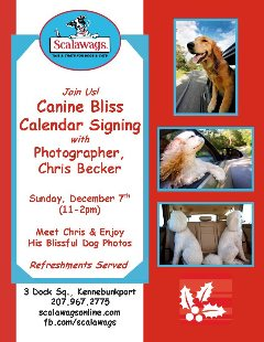 Canine Bliss Dog Calendar