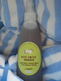 Dog Smog Remedy