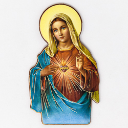 Sacred Heart of Mary Fridge Magnet.
